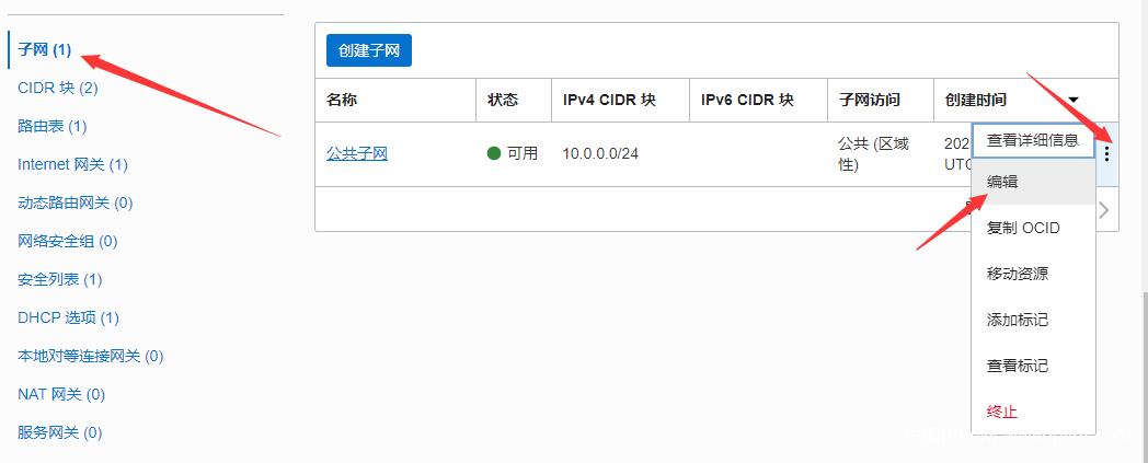 Oracle Cloud 甲骨文云启用原生 IPv6 地址详细教程